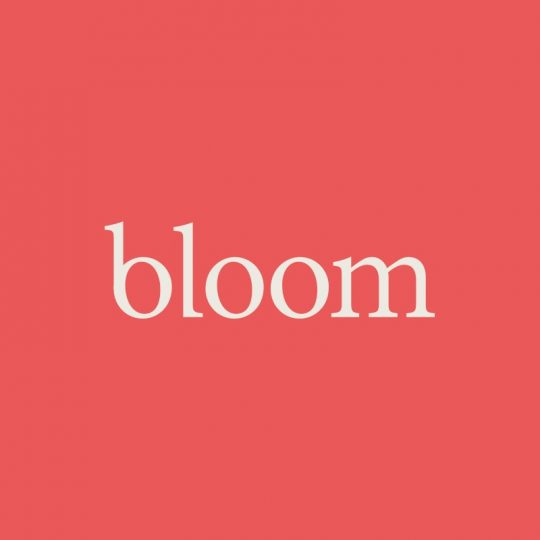 bloom-agency-logo-1413207617